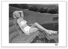 Marilyn Monroe: Lawn Session 4