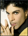 Prince Musicology Tour Program