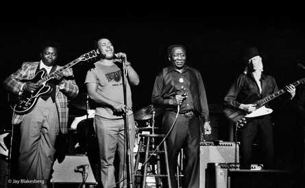 BB King, James Cotton, Muddy Waters, Johnny Winter